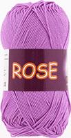 Rose 3934