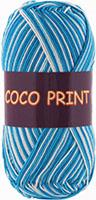 Coco print 4668